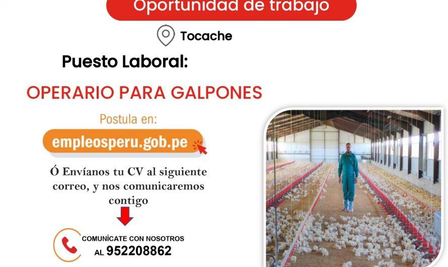 𝐎𝐩𝐨𝐫𝐭𝐮𝐧𝐢𝐝𝐚𝐝 𝐋𝐚𝐛𝐨𝐫𝐚𝐥: Puesto Operario para Galpones.
